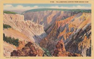 Yellowstone Canyon From Grand View Yellowstone National Park Wyoming