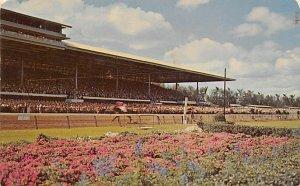 Miami, FL USA Horse Racing Unused