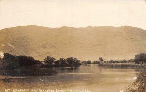 G61/ Reedley California Postcard RPPC c1910 Mt Campbell Wahtoke Lake