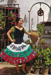 Spanish Dancer Embroidered Dress