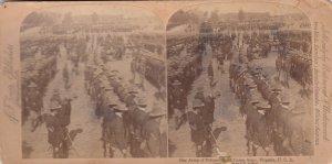 SV: CAMP ALGER , Virginia , 1898 ; Army of Volunteers