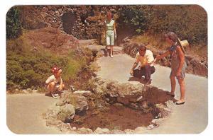 AR Hot Springs National Park Arkansas Thermal Water Display Family Vtg Postcard