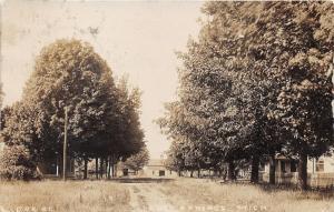 Cedar Springs Michigan~Oak Street Scene~Houses~Horse Carriage~1909 RPPC