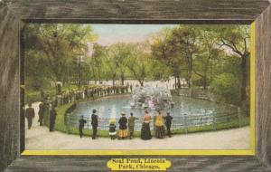 Illinois Chicago Seal Pond Lincoln Park 1907