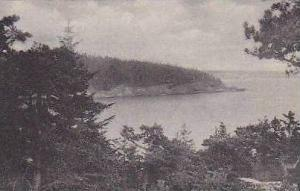 Maine Bar Harbor Great Head From Ocean Drive Albertype