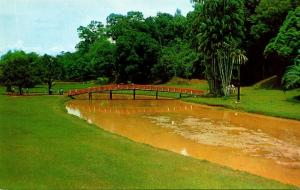Malaya Kuala Lumpur The Lake Garden