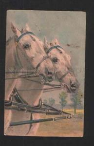 077801 Heads of White HORSE Embossed by KOCH vintage PFB Publ.