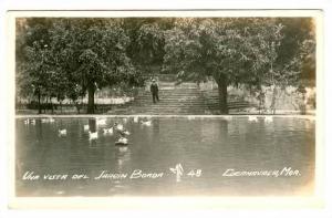 RP; Una Vista del Jardin Borda, Ducks in Lake, Cuernavaca, Morelos, Mexico, 1...