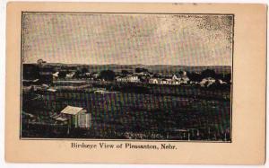 Birdseye View, Pleasanton Neb