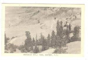 Anarchist Mtn. Road , OSOYOOS  , B.C. , Canada , 1920-40s