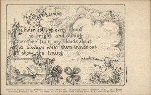 Temperance Alcoholism The Silver Lining Poem AT Cook Hyde Park NY Postcard