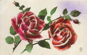 Roses tinted greetings postcard