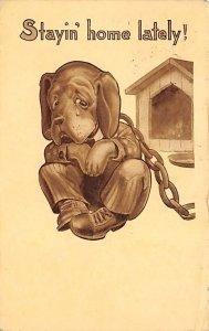 Cartoon Dog 1911