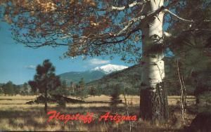 San Francisco Peaks near Flagstaff AZ, Arizona
