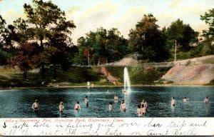 Connecticut Waterbury Hamilton Park Swimming Pool 1908