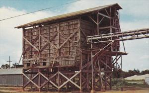 AVON PARK, Florida; Abandoned Orange Conveyer, 40-60s