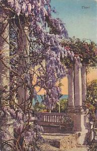 Capri , Italy , 00-10s