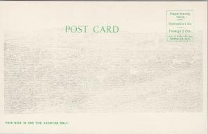 Smethport PA Penn Unused CB Dickinson Postcard E58