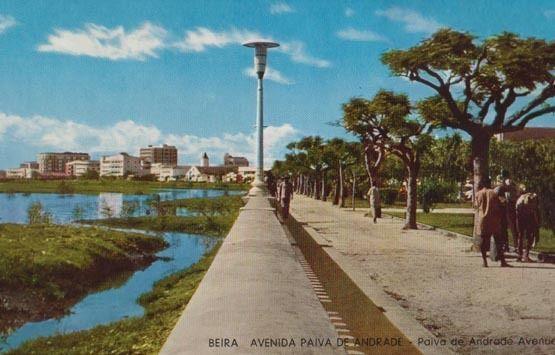 Beira Avenida Andrade Avenue Mozambique African Postcard