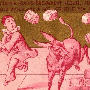 1880 Clown Jackass King's Quick Rising Buckwheat Flour Victorian Trade Card