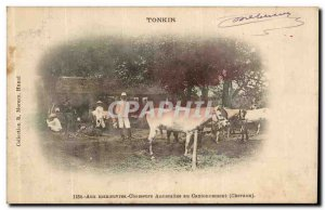 Old Postcard Tonkin At maneuvers Annamite Hunters in contonnement Horses