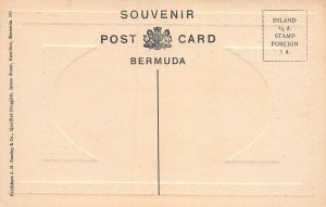 Outerbridges Lilly Field, Bermuda, Early Embossed Postcard, Unused