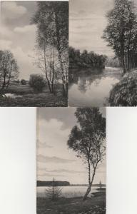 (3 cards) Rural Scenes - Pond - River - Lake - Printed in Germany - DB