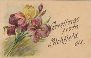 Flowers, Greetings From Litchfield, Illinois, 1900-1910s