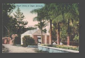 090297 BERMUDA Royal Palms at Paget Vintage PC