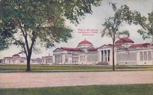 Illinois Chicago Field Museum Jackson Park