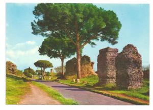 Rome Italy Old Appia Street Appian Way Postcard