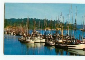 Vintage Postcard Yaquina Bay Sail Boats  Sheltered Newport Oregon # 2379