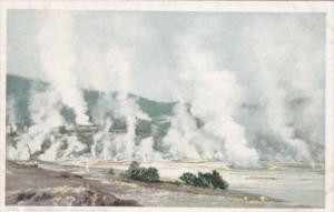 Norris Geyser Basin Yellowstone National Park Detroit Publishing
