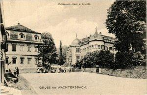 CPA AK Gruss aus WACHTERSBACH Prinzessinnen Haus u. Schloss GERMANY (865368)