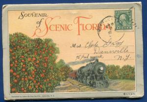 Scenic Florida 1910s railroads St Johns River night orange grove postcard folder