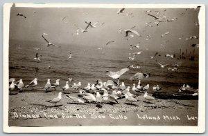 Leland MI~Dinner Time For Seagulls On Lake Michigan RPPC 1941 Postcard
