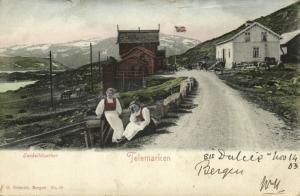 norway norge, TELEMARKEN, Haukelidsæter, Girls in Costumes (1903) Postcard