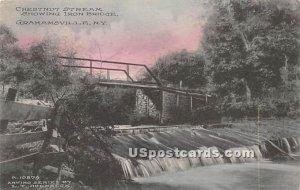 Chestnut Stream - Grahamsville, New York