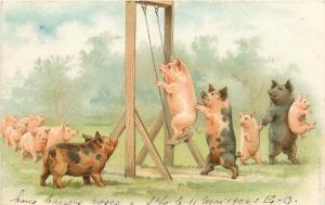 Chromo litho 1904 postcard humanized pigs swing fantasy cochons caricatures