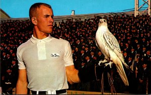 Colorado Colorado Springs United States Air Force Academy Falcon Mascot