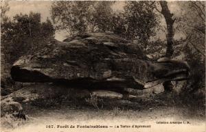 CPA Foret de FONTAINEBLEAU - La Tortue d'Apremont (248959)