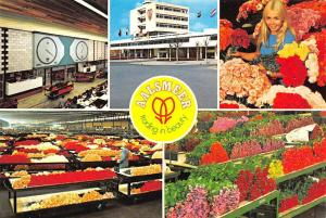 Netherlands Aalsmeer Cutflower section United Flower Markets Snijbloemenafdeling
