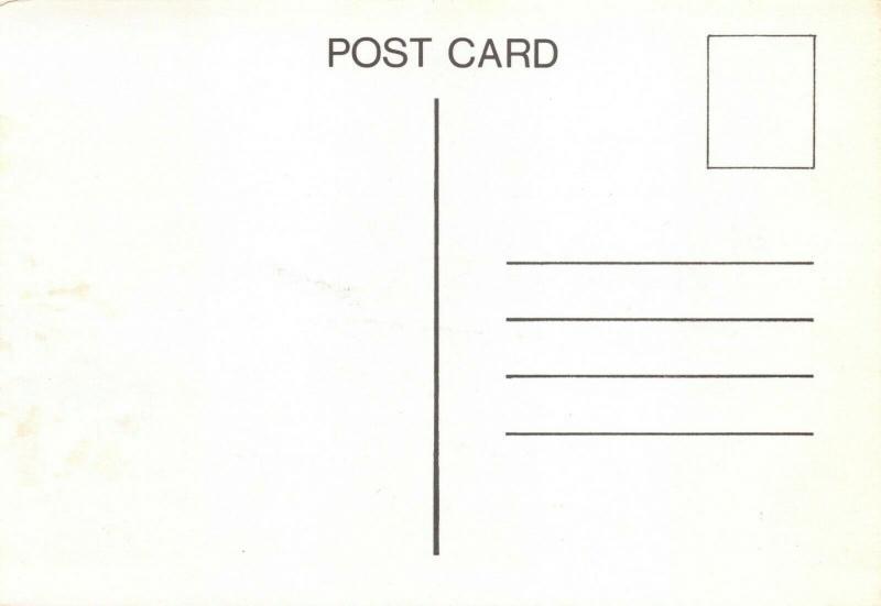 Vintage Art Sketch Postcard, The Wreck of the Athina B, Brighton Beach 1980 92Q