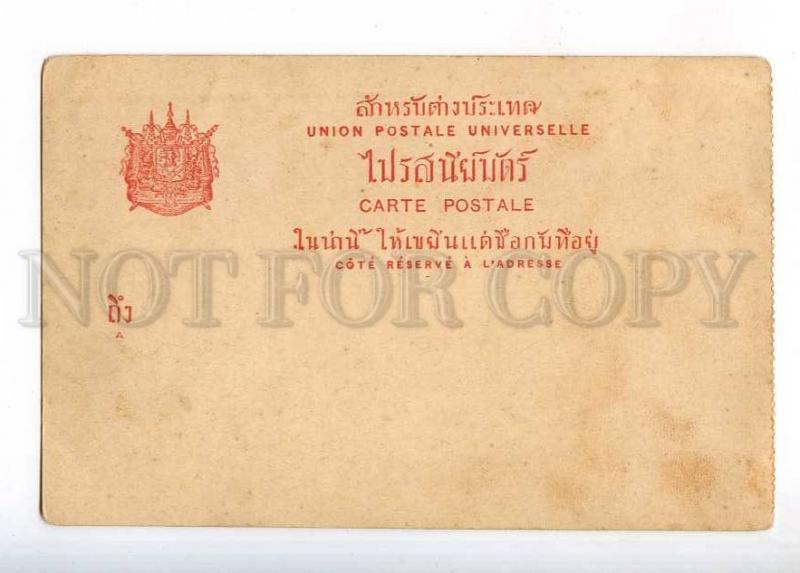233029 Thailand Ajuthia wild elephants Vintage Lenz postcard