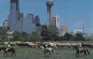 DALLAS, Texas, 1984; Wild West Show during GOP convention