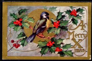 A Merry Christmas Bird Holly