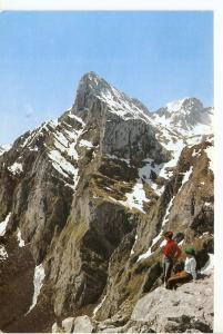 Postal 045580 : Picos de Europa. Desde el Mirador del cable
