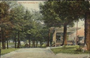 Lynchburg VA Miller Park c1910 Postcard