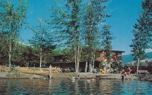 Swimming Scene, Vernon, British Columbia, Canada, 1940-1960s