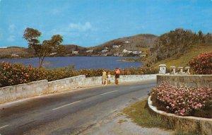 Pink Hibiscus Millhouse Bay Bermuda Island Unused